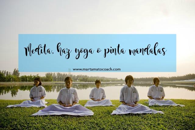 Medita, haz yoga o pinta mandalas